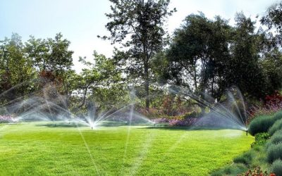 Market Your Business as a Leader During Smart Irrigation Month
